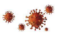 Ein Mitarbeiter hat sich mit COVID-19 infiziert – was tun?